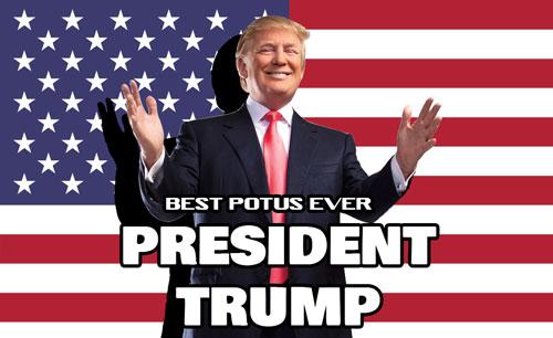 Donald-Trump-Transparent