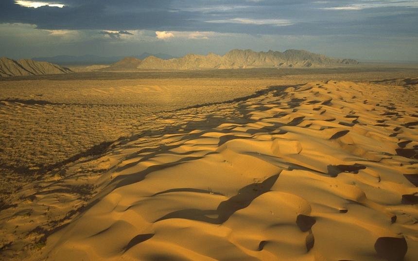 World_Mexica_Mexican_desert_025982_.jpg