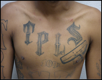 MS-13 Chest.png