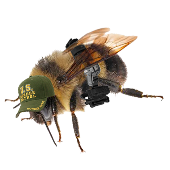 BorderPatrolBee.png