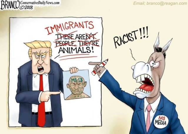 trump-immigrants-animals-1527199021.jpg