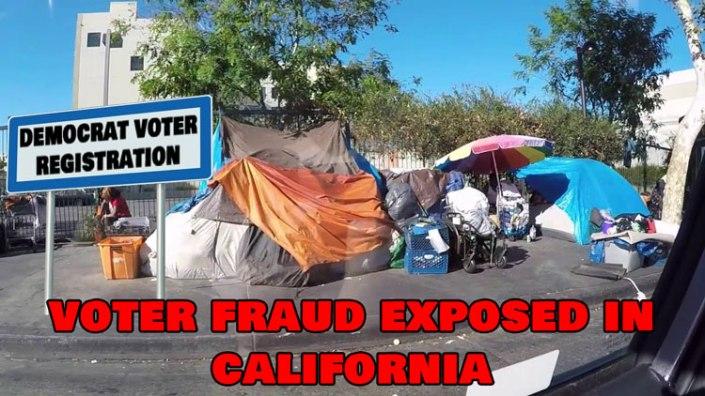 voterfraudcalifornia
